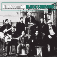 Cover of the track The Essential Black Sorrows