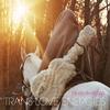 Couverture de l'album Trans-Love Energies