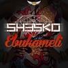 Couverture de l'album Ebukameli - Single
