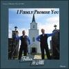 Couverture de l'album I Firmly Promise You