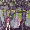 Couverture de l'album Wild Like Children