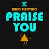 Cover of the album Praise You