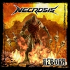 Couverture de l'album Reborn
