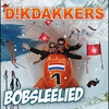 Cover of the album Bobsleelied - Single