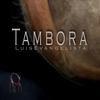 Couverture de l'album Tambora - Single