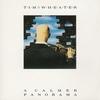 Couverture de l'album A Calmer Panorama