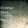 Cover of the album Voodoo Hack - Single