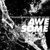 Couverture de l'album Awesome (feat. The Cool Kids) - Single