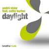 Couverture de l'album Daylight (Remixes) [feat. Cathy Burton]