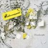 Cover of the album Soundmanifest