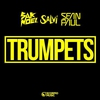 Cover of the track Trumpets