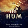 Couverture du titre The Hum