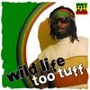 Couverture de l'album Too Tuff
