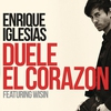 Cover of the track DUELE EL CORAZON (feat. Wisin)