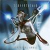 Couverture de l'album Infernal Angel