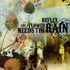 Cover of the album Like a Flower Needs the Rain