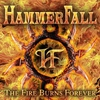 Cover of the album The Fire Burns Forever - Single
