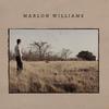 Cover of the album Marlon Williams