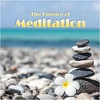 Couverture de l'album The Essence of Meditation