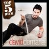 Couverture de l'album Top 5 Hits: Davíd Demaría - EP