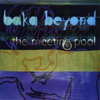 Couverture du titre The Meeting Pool