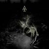 Cover of the album Ascension