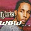 Couverture de l'album Wow... The Story