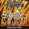 Cover of the album Cumbias Con Garra, Vol. 4