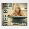 Cover of the album Een Sprong in de Tijd