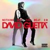 Cover of the album Nothing but the Beat 2.0
