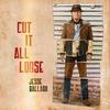 Couverture de l'album Cut It All Loose