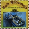 Couverture de l'album A Truckload of Blues