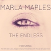 Cover of the album The Endless