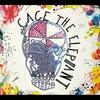 Couverture de l'album Cage the Elephant
