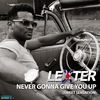 Cover of the album Never Gonna Give You up (Sweet Sensation) - EP