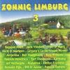 Couverture de l'album Zonnig Limburg 3