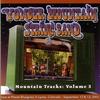 Couverture de l'album Mountain Tracks, Vol. 3 (Live)