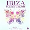 Couverture de l'album Ibiza Sunset Dreams, Vol. 3 (Compiled by DJ Zappi)