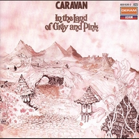 Cover of the track In the Land of Grey and Pink