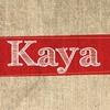 Couverture de l'album Kaya