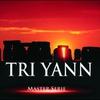 Cover of the album Master série: Tri Yann