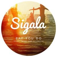 Couverture du titre Say You Do (feat. Imani & DJ Fresh) [Radio Edit] - Single
