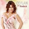 Cover of the album Ceylan 2011 Arabesk