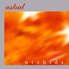 Couverture de l'album Orchids
