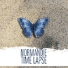 Couverture de l'album Time Lapse (Bonus Track Edition)