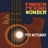 Cover of the album Fingerpicking Wonder: The Music of Stevie Wonder