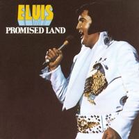 Cover of the track Promised Land (Deluxe Version)