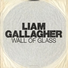 Couverture de l'album Wall of Glass - Single