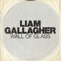 Cover of the track Wall of Glass - Single