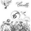 Couverture de l'album Cécille Numbers 6, Retroceso - EP